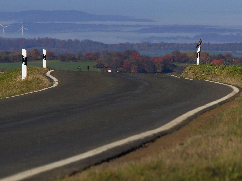 Der Hohe Vogelsberg, klick auf das Bild